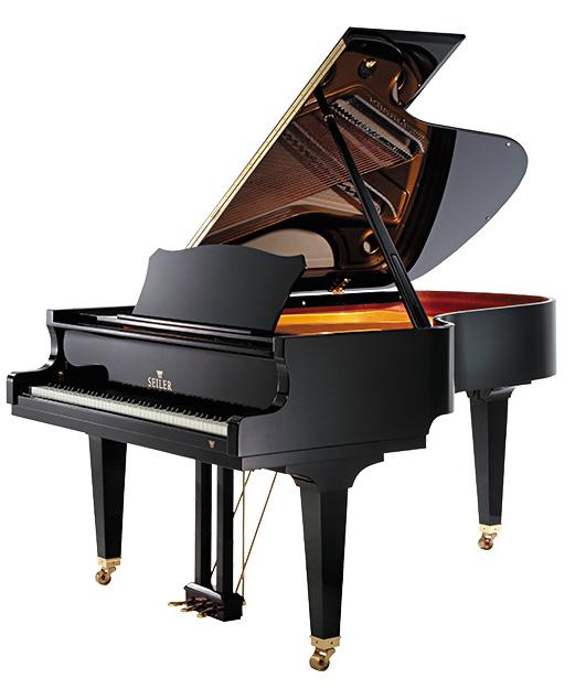 186-Maestro